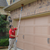 Bio-Tech Pest Control - Pest Control & Termite Control in Spring, TX - Gallery Photo 6