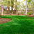 Low Country Earthscapes - Landscaping in Richmond Hill, GA - Gallery Photo 2