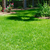 Low Country Earthscapes - Landscaping in Richmond Hill, GA - Gallery Photo 5