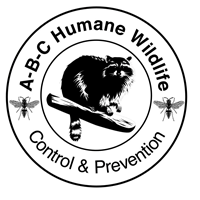 ABC Humane Wildlife Control & Prevention