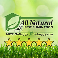 All Natural Pest Elimination
