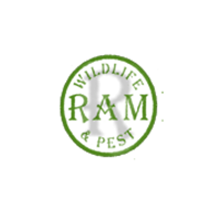 RAM Wildlife & Pest Management