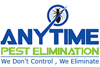 Anytime Pest Elimination