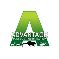 Advantage Pest Control Of Florida